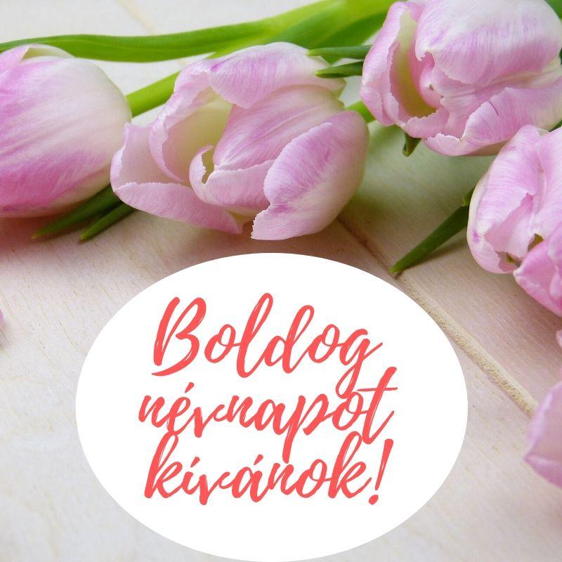 névnapi idézetek legjobb barátnőmnek Névnapi virágok   Születésnapi köszöntők