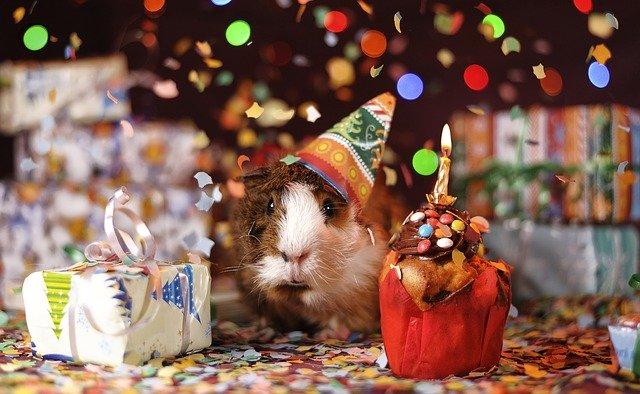 Boldog születésnapot köszöntő